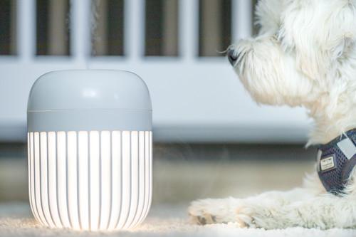 InnoGIO GIOhygro Light Nawilżacz powietrza z lampką GIO-190WHITE (16)